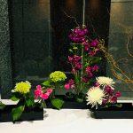 Arrangement Ikebana Ohara